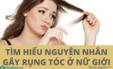 Nguyên nhân rụng tóc nhiều ở nữ giới
