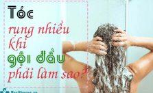 rụng tóc nhiều khi gội đầu