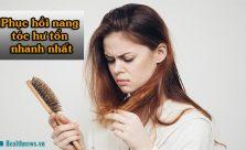 Phục hồi nang tóc hư tổn