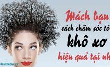 Chăm sóc tóc khô xơ