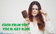 Cách chăm sóc tóc gẫy rụng